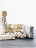 Various goat's milk cheeses