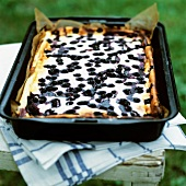 Blueberry quark cake in baking tin