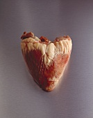 A calf's heart