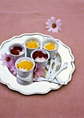 Vanilla rice pudding with different fruit purees