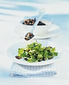 Redcurrant leaf salad with pumpkin seeds