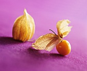 Physalis with closed and opened husk