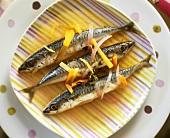 Makrelen im Gemüsesud