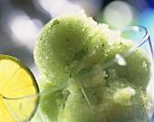 Green lime sorbet