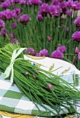 Freshly cut chives on a plate out of doors