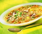 Barley soup with vegetables and mushrooms