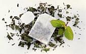 Fresh mint, dried mint leaves and tea bag