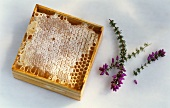 Honeycomb with heather