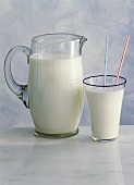 Jug of milk and glass of milk with straws