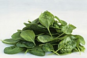 A heap of spinach leaves