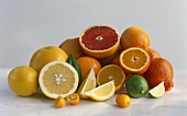 Assorted citrus fruit, whole and pieces