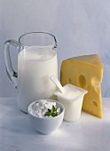 Dairy products: milk, cheese, yoghurt, quark