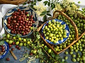 Still life with green and red gooseberries