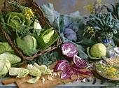 Brassica still life