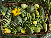 Courgettes, squashes and marrows with flowers in a basket