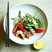 Grilled mackerel with herb salad