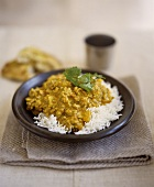Turkey curry on a bed of rice