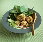 Sesame falafel with a water cress and cucumber salad