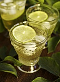 Elderflower soda with limes