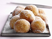 Sugared doughnuts on a baking tray