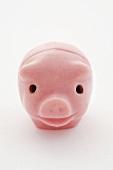 A lucky pink pig