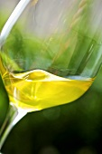 Olive oil being swirled in a glass