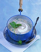 Minted yoghurt soup