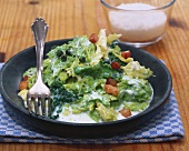 Creamed Savoy cabbage with diced bacon