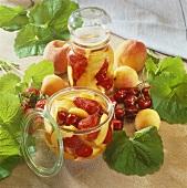 Two jars of Rumtopf (fruit preserved in rum)