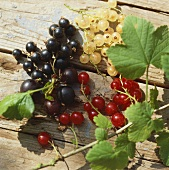 Black-, white and redcurrants on wooden background