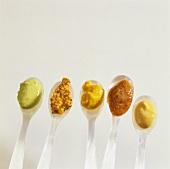 Mustard parade (Various types of mustard on spoons)