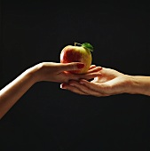 Woman's hand passing apple to man's hand