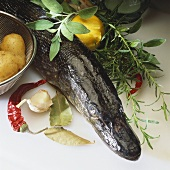 Fresh pike and assorted ingredients