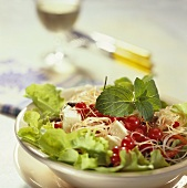 Gourmet salad with glass noodles, cheese and redcurrants