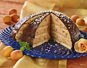 Large chocolate-covered dome cake with apricot filling