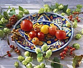Still life with tomatoes, hops and whitebeam berries