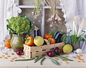 Broccoli, aubergines, spring onions etc. (decorative arrangement)