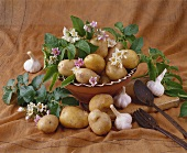 Still life with potatoes and garlic