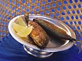 Spicy mackerel from Maharashtra, India