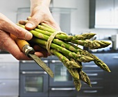 Hand holding a bundle of green asparagus