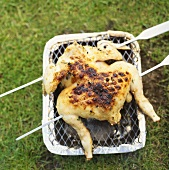 Mariniertes Hähnchen auf kleinem Grill im Freien