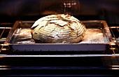 Ein Brot im Ofen