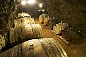 Wine barrels in wine cellar, Istvan Szepsy, Mad, Hungary
