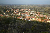 The town of Tokaj, Hungary