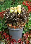 Autumnal arrangement of twigs and small pears