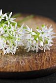 Ramsons (wild garlic) flowers on wooden background