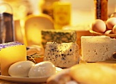Still life of various types of cheese