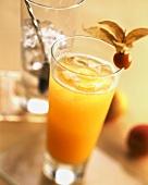 Apricot Lady