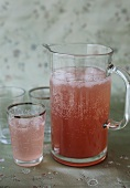 Rhubarb schorle (rhubarb juice and carbonated water)