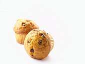 Two chocolate chip muffins